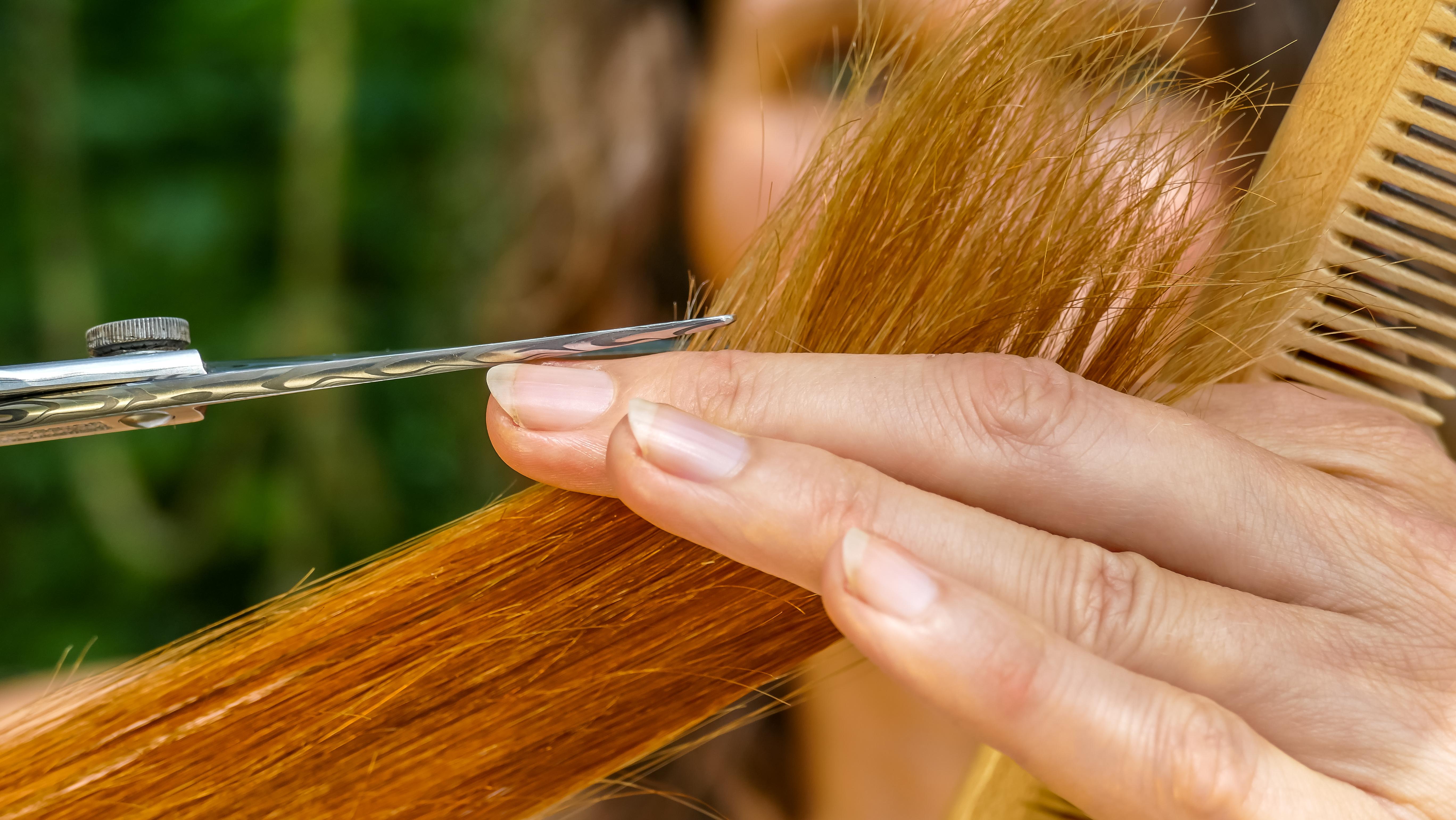 ener ischer haarschnitt osterreich modische haarschnitte und